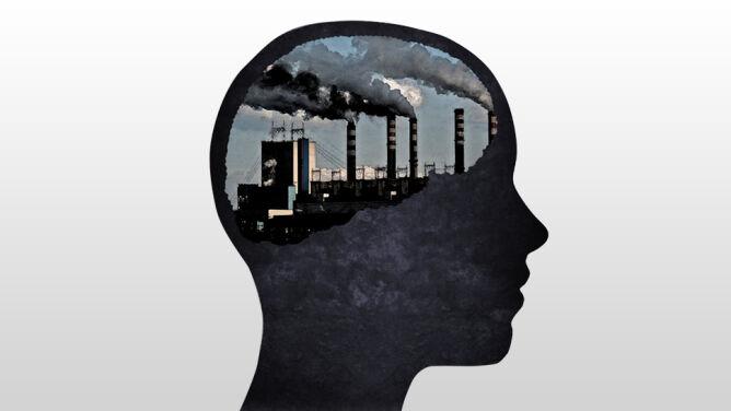 Zanieczyszczenia wnikają do mózgu