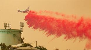 Pożary w Australii (PAP/EPA/SHANE CHALKER, DAN HIMBRECHTS)