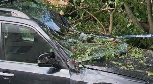 Powalone drzewa, zniszczone samochody po wichurze